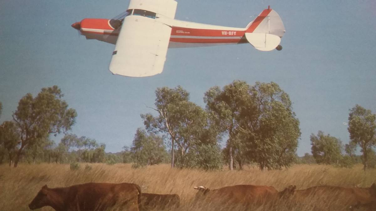 UP IN THE AIR: The Burdekin district in Queensland has been ravaged in recent times. This Cessna muster is a regular job in more normal seasons.