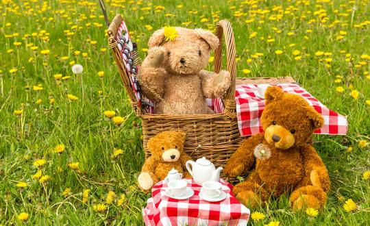 CAN YOU BEAR IT: Oberon Hospital Auxiliary is inviting the community to a Teddy Bears' Picnic at the Oberon Common.